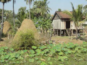Une habitation typique des campagnes au cambodge